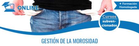 GESTIÓN DE MOROSIDAD
