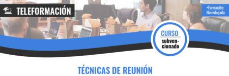 TÉCNICAS DE REUNIÓN