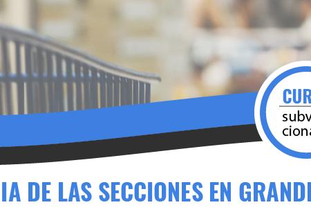 (ONLINE) GESTIÓN DIARIA DE LAS SECCIONES  EN GRANDES ALMACENES